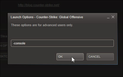 Best settings for launch options csgo pro